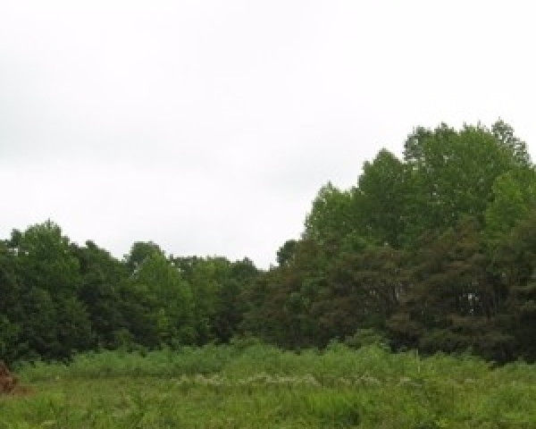 Land For Sale By Owner - Mountain Oaks Retreat